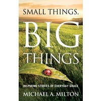 Small Things Big Things