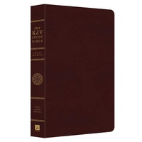 KJV Study Indexed Bible Burgundy